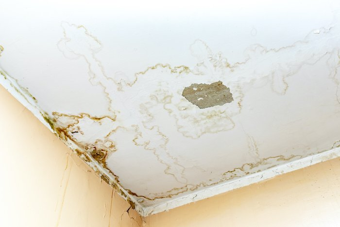 3 Ways to Fix a Leaking Ceiling (+ Tips for Preventing Severe Damage)